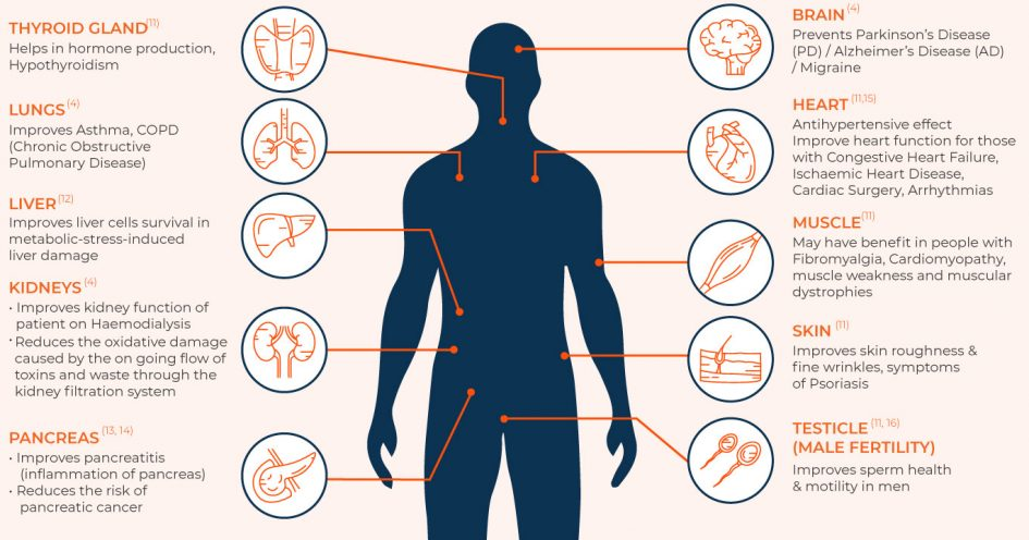 humanGraph